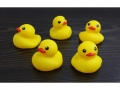 Rubber duck 5 pieces   MB-11384